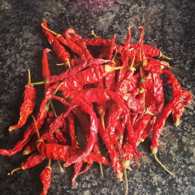 DRIED RED CHILLIES FROM A FRIENDS GARDEN