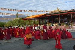 geshe-lamas-monks