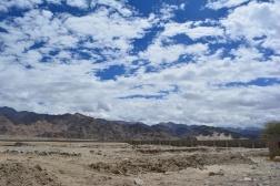 schools-landscape