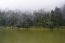mist-setting-in