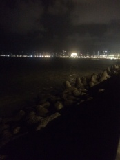 SEA AND LIGHTS