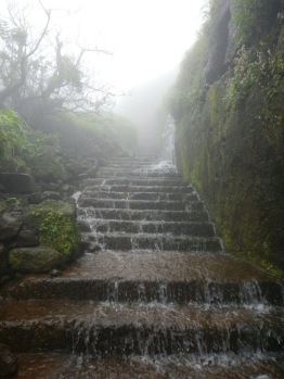 ETHEREAL STEPS