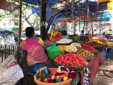 THE FLOWERS OF GANDHI BAZAAR