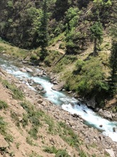 THE WILD IN ALL OF US - RUPIN RIVER